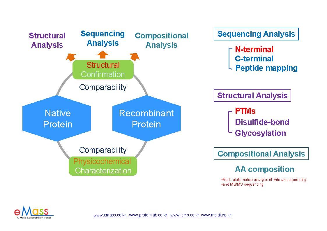 단백질의 특성분석의 흐름과 목적_0506_페이지_1.jpg